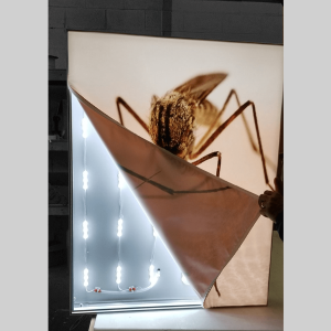 BACKLIT FABRIC LIGHT BOX 3″ FRAME 1